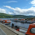 Boats to hire