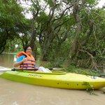 Kayaking through mangroves forest