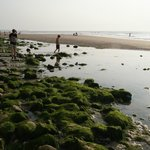 La plage d'Escalles