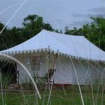 Beautiful tents