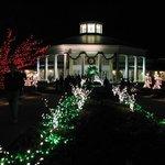 DSBG - holiday lights - front entrance