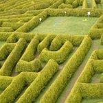The Kildare Maze