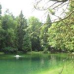 petit lac dans le parc de l'hotel