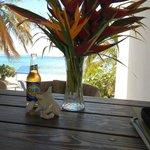 View /Carib