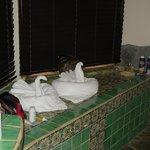 Bathroom (every day a new towel animal)