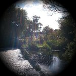 Weir across the garden
