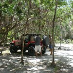 with Roatan 4x4 in Palmettobay