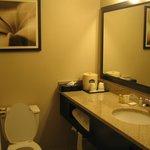 sink/toilet/shower