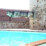 La piscine et l'arrivée d'eau