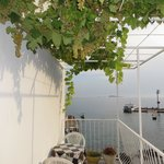 Balcony and told to help yourself to the grapes