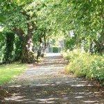 Lovely Walks