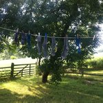 An idyllic place to dry socks