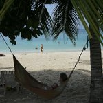 Hammock (watch out for the coconuts...)