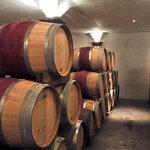 Barrel Maturation Cellar