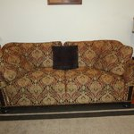 Apt/Suite couch/Sleeper sofa