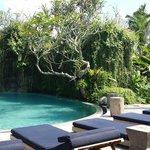 decent pool for a 25 villa resort