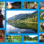 Postkarte vom Talhof