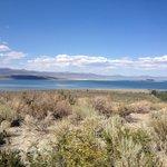 A Mono Lake Beauty