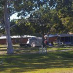 the camping ground has lots of lovely trees for shade