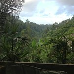 vue depuis la terrasse villa 2 chbres