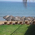 Hotelliegen & Sonnenschirme