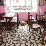 Carpe Diem ~ Dog Friendly ~ Pink, dining room and also a rooftop dining room (not shown)