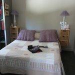 Комната с видом на прекрасную пальму