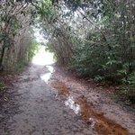 A trilha eh maravilhosa!