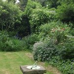 Rosa's Garden in the back