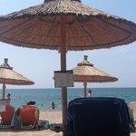 Mango Beach Bar