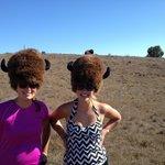 Foto de Wet Spot Rentals - Island Outback Tours