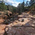 Along Wilson Canyon Trail