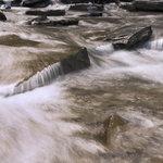 Rapids at stony brook