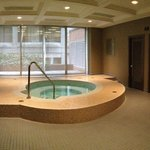 Steam room and hot tub