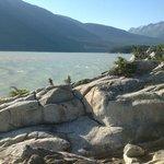 Splendid rocks, trees, and more at Yakutania Point