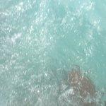 Agua limpia del jakuzzi