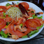 Salade met zalm en rivierkreeftjes