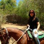 Topanga Horses