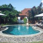 La piscine au coeur des bungalows