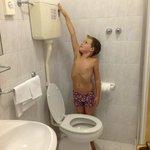 probeer het toilet door te trekken