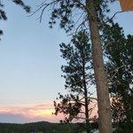 Nice pine framed sunsets