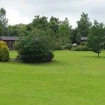 plenty of green space
