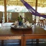 Communal lounge/terrace