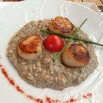 Truffle Risotto with Scallops