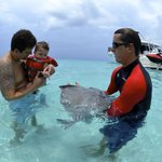 Grandson meeting his first stingray