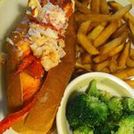 Hot buttered lobster roll. Star of the show.