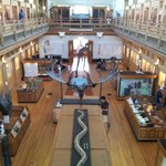 Great Hall within the Redpath Museum.