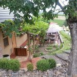 Grape arbor patio viewed from walk to Winery.