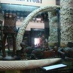 Ivory Display