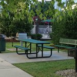 Numerous outdoor cook out/eating areas